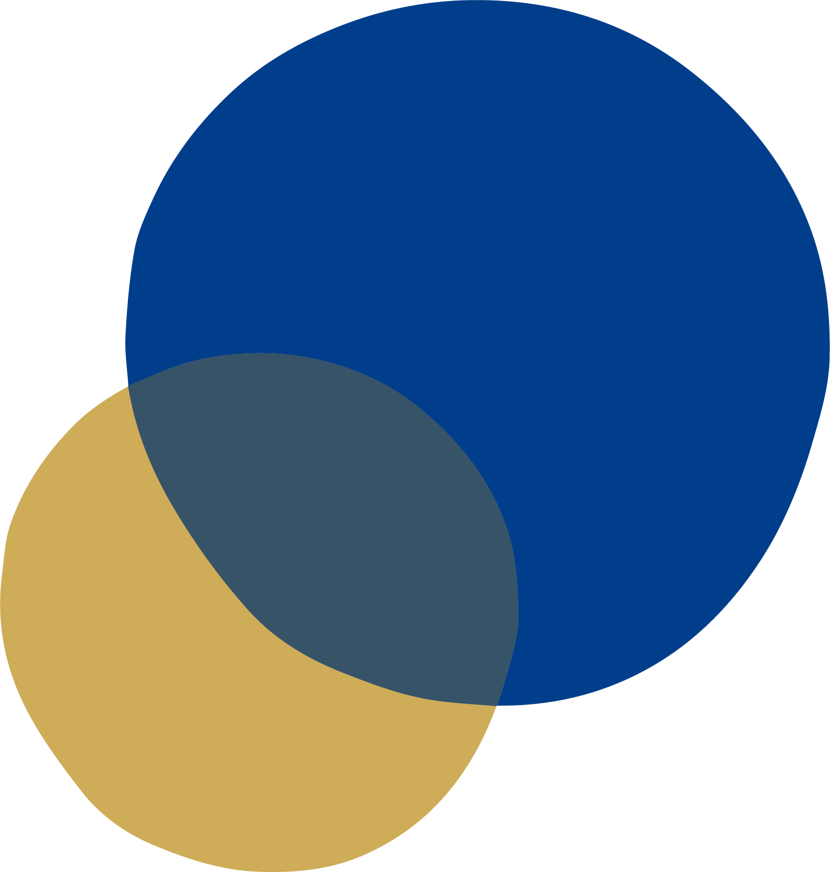 gold and blue vector circle